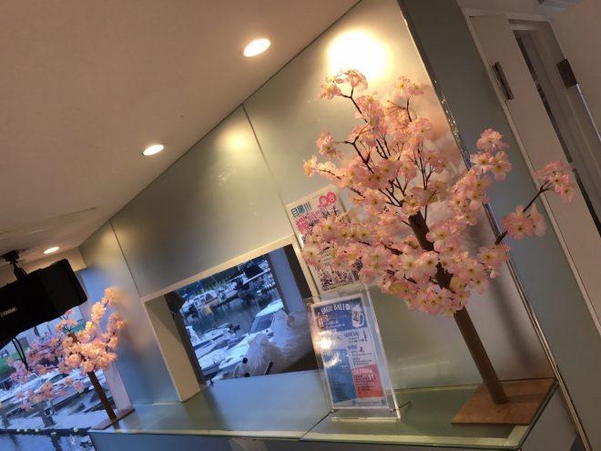 ドリンクカウンターに置かれた桜の造花
