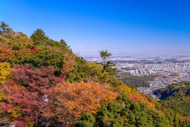 ほんのり紅葉している山の景色