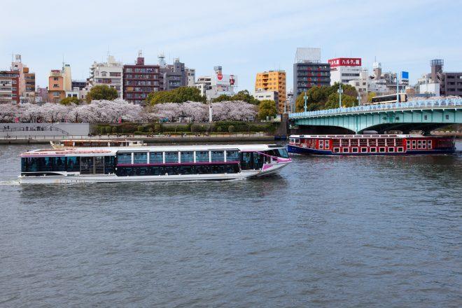川を進む船と川岸の桜並木