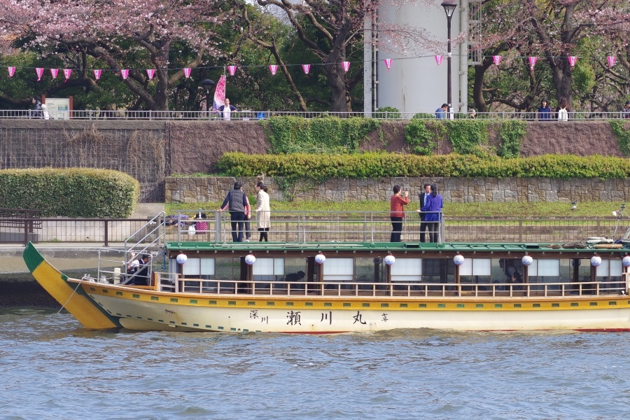 Segawa-maru mooring on the Sumida River