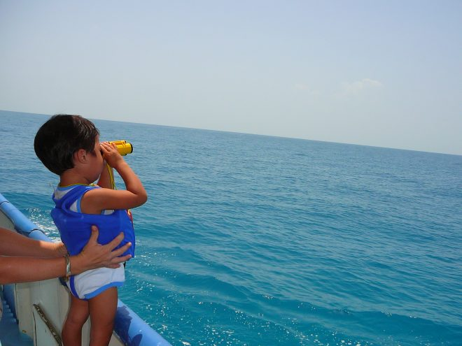 展望デッキから海を眺める子ども