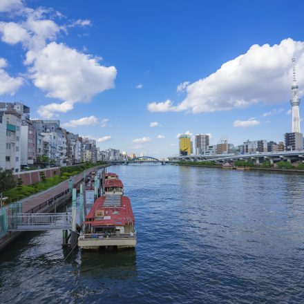 隅田川から見た東京の景色